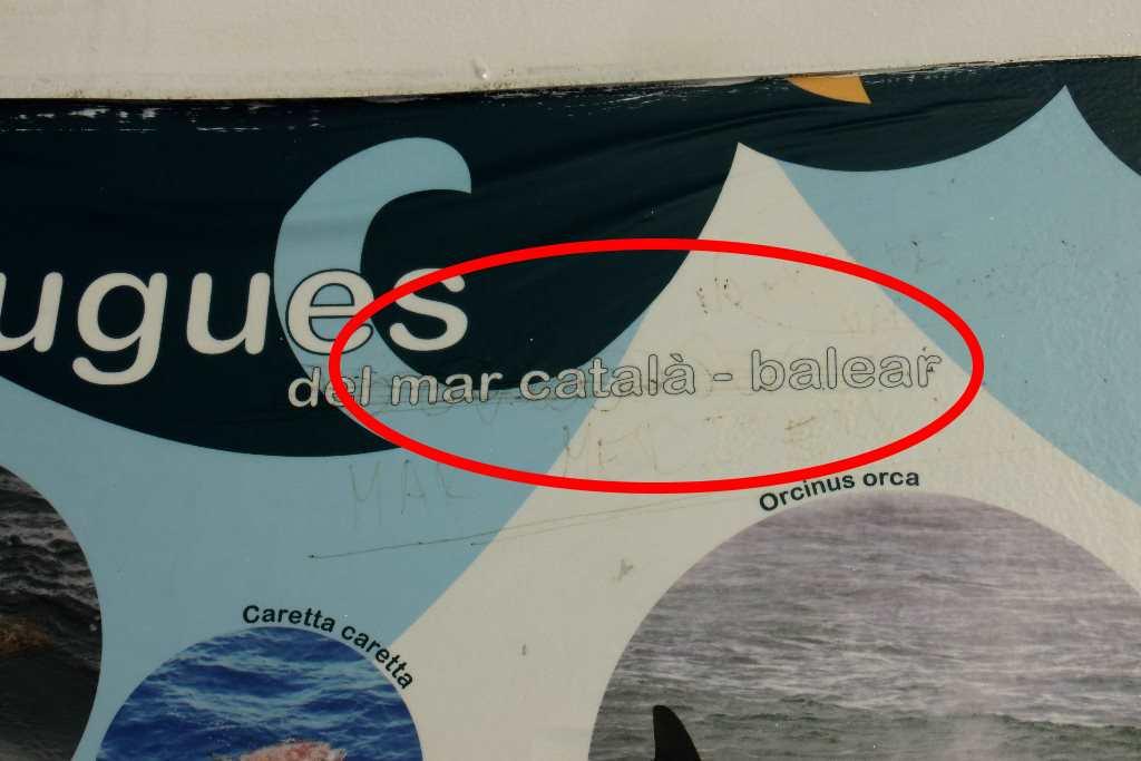 Mar catala-balear